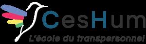 logo-ceshum-2019