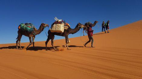 المغرب - Morocco